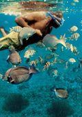 Tour Tulum y Akumal en Cancun, Riviera Maya y Puerto Aventuras | Tulum y Akumal de Cancun Adventures