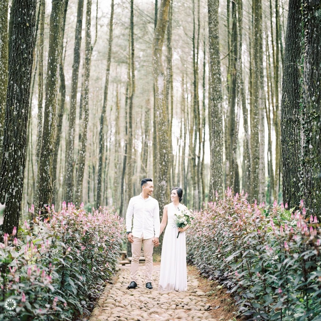 The few hours spend with you are worth the thousand hours i spend without you. . . Courtesy from Prewedding of Sherly @sherlyveronika & David @pakpid Location at Hutan Pinus Imogiri, Bantul Yogyakarta Photo by @alvinfauzie The moment taken with Hasselblad 500cm Potra800 . Follow our official account of studio @alvinstudio Check our website for the other photos at www.alvinphotography.co.id