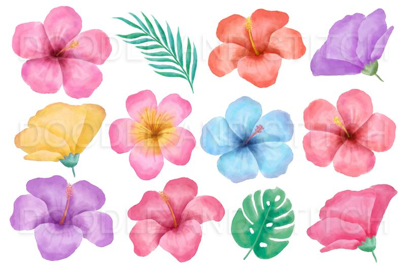 Tropical Flower Watercolor Flower Illustrations By Doodle Art Thehungryjpeg C Watercolor Flower Illustration Doodle Art Flowers Tropical Flowers Illustration