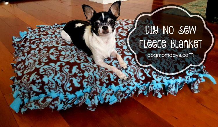 Diy No Sew Fleece Blanket For Pets And Humans Diy Dog Blankets