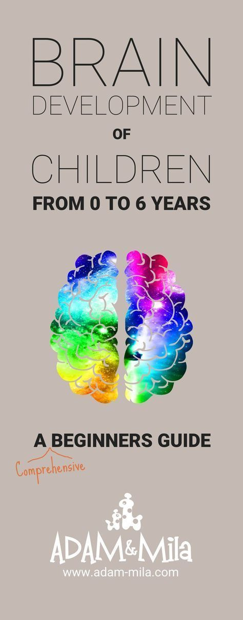 Brain Development of Children from 0-6 years - Facts every parent should know