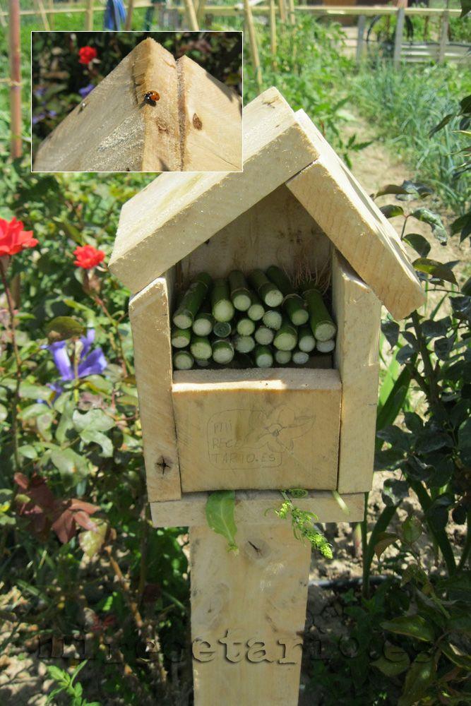 Una casa para mariquitas | mirecetario.es