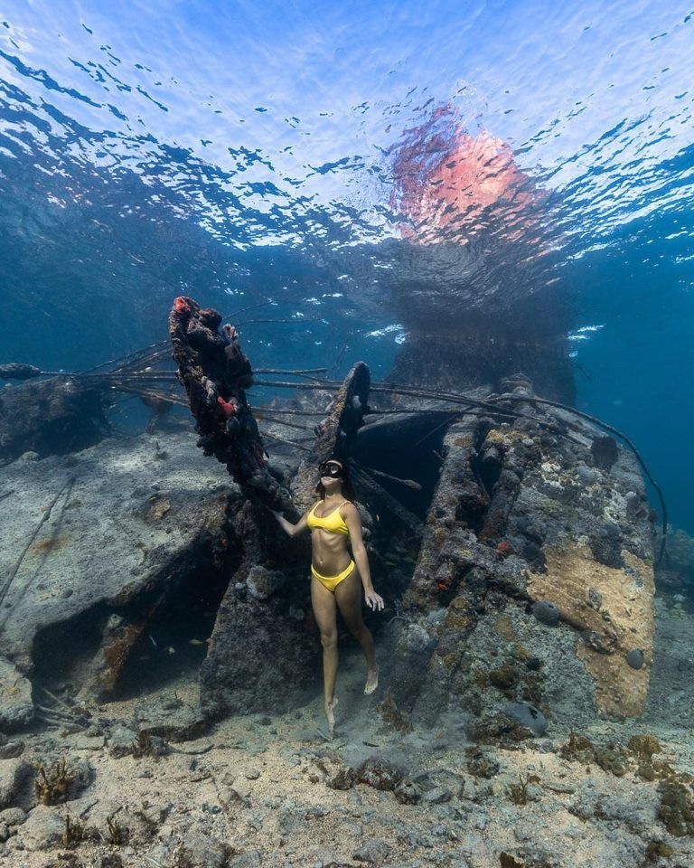 Breathtaking Underwater Photography By André Musgrove