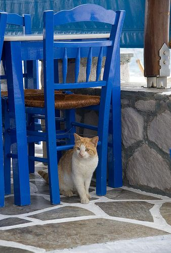 expectant by northlea, Milos via Flickr
