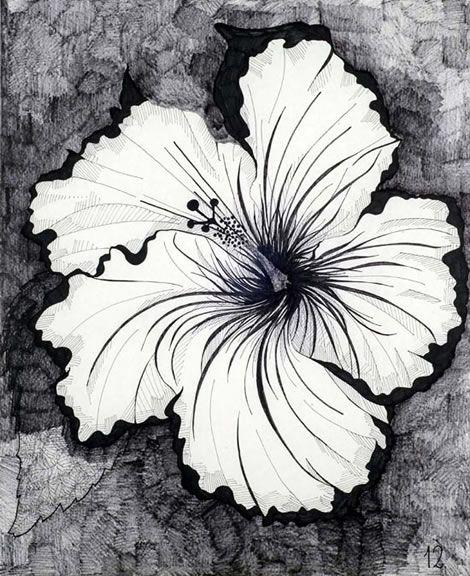 Aleksandra Mir  arte  Pinterest  Flores tropicales Tropical y