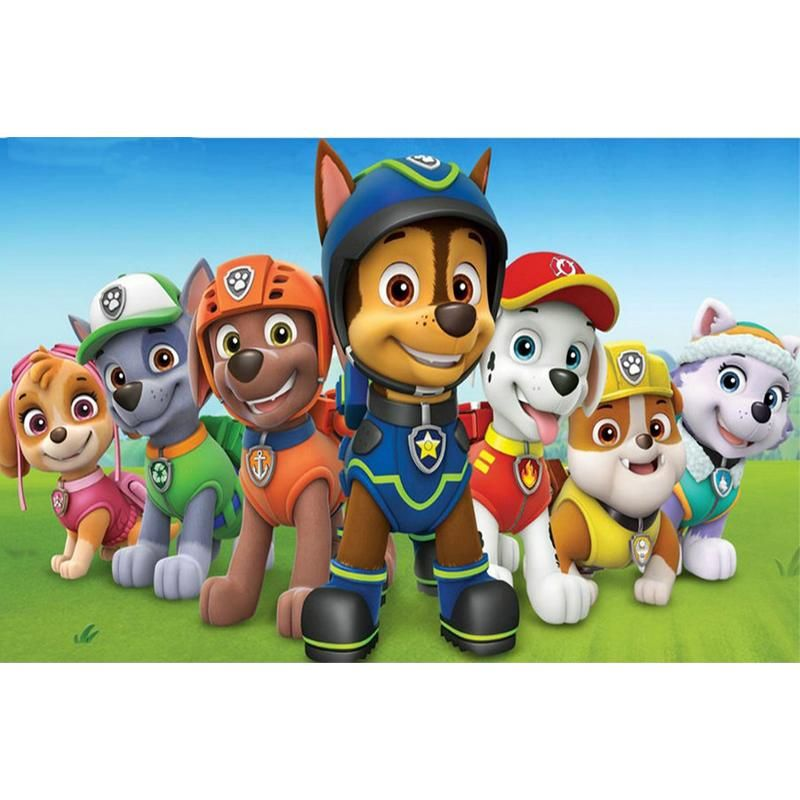 You Too Can Be An Artist When You Paint With Diamonds Every Kit Gives You A Chance To Create A Work Of Art You Paw Patrol Cartoon Paw Patrol Party
