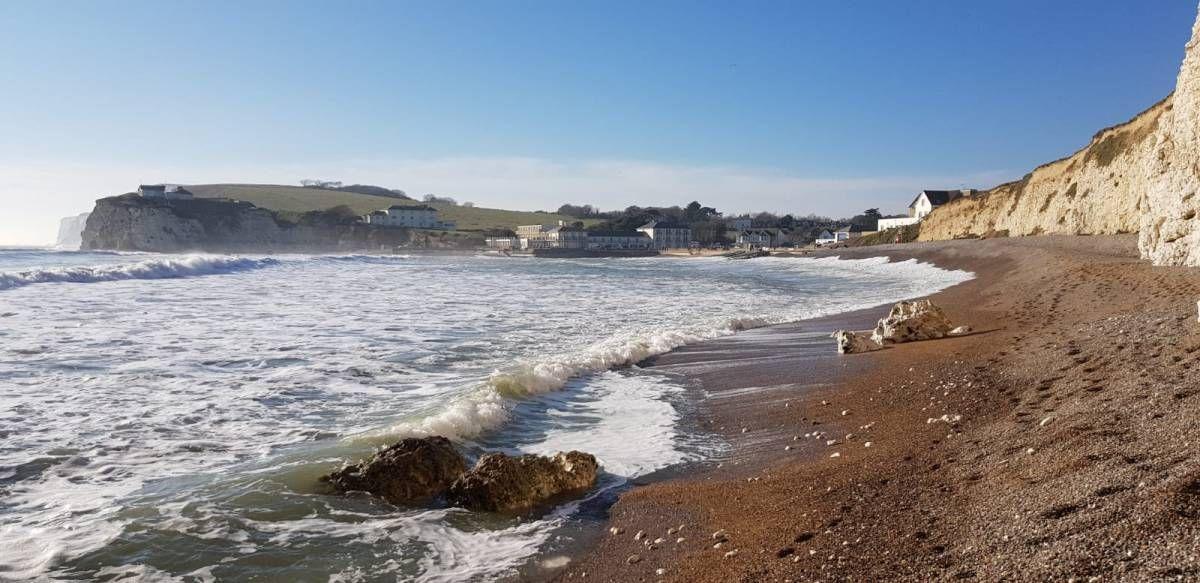 116dcc4cdba5307dee2cec9adb134870 - The Coastal Gardener Isle Of Wight