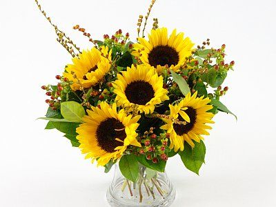Sunflower Surprise A Gladdening Arrangement Of Fresh Sunflowers With Green Foliage And Red Berries With Images Flower Delivery Sunflower Delivery