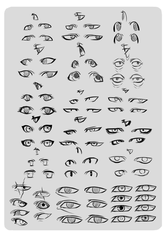 Eye Reference. by *moni158 on deviantART Eye anatomy