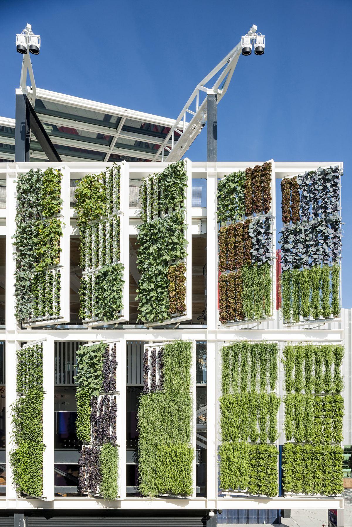 Usa pavilion expo milano 2015 green facade and wall pinterest gr ne architektur - Grune architektur ...