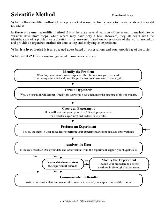 Printables The Scientific Method Worksheets The Scientific Method