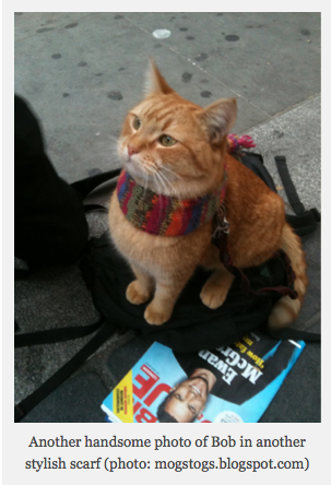 A Street Cat Named Bob Book Review Cats And Kittens Street Cat Bob Cats