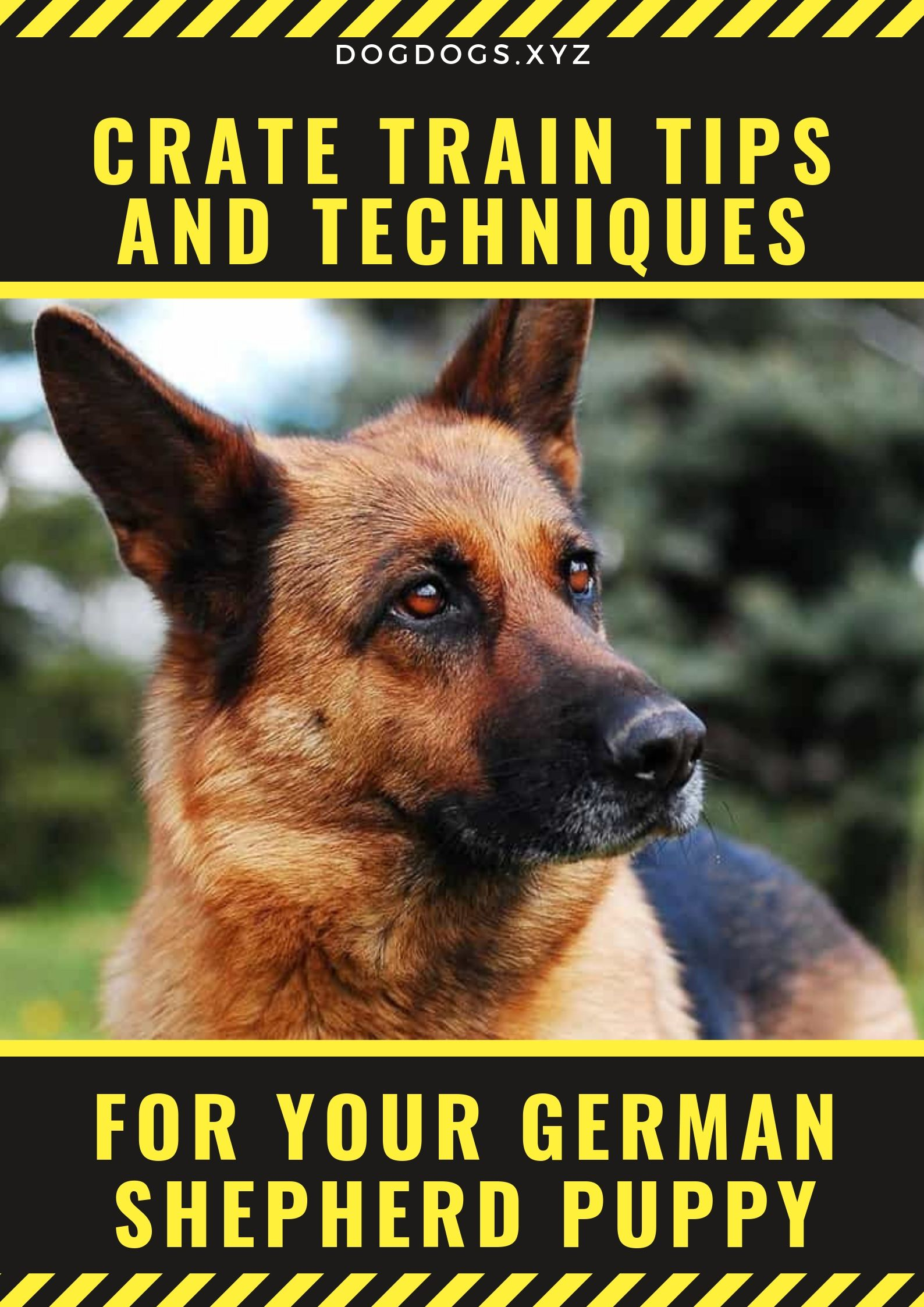 Training A German Shepherd Puppy Tips Free Mini Course