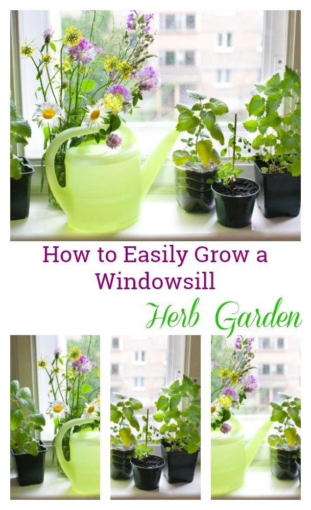 An Easy Diy Windowsill Herb Garden This Window Sill Herb Garden Is Perfect To Grow Your Herbs In Your Diy Herb Garden Window Herb Garden Mason Jar Herb Garden