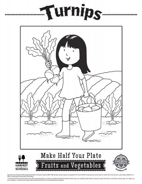 Turnips Coloring Sheets For Kids Vegetable Coloring Sheets