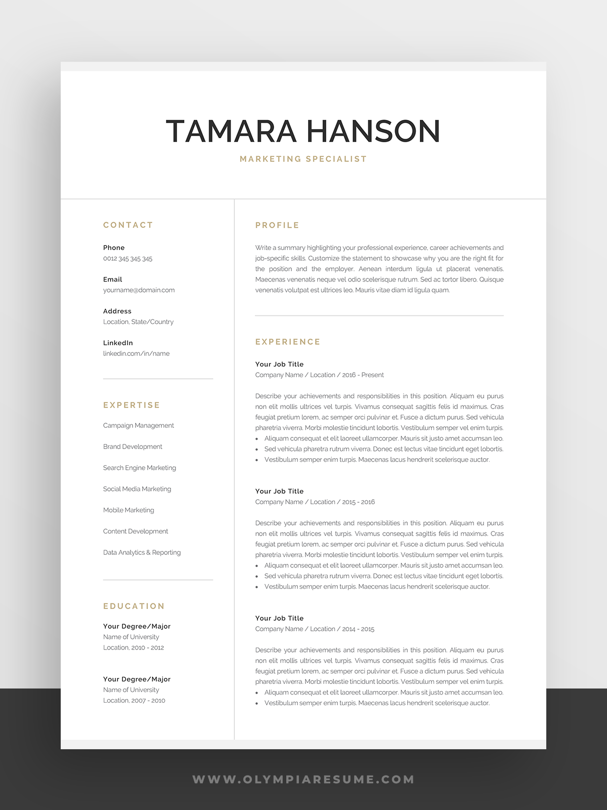 Professional Resume Template For Word Pages Modern Etsy In 2020 Resume Template Word Resume Template Professional Marketing Resume