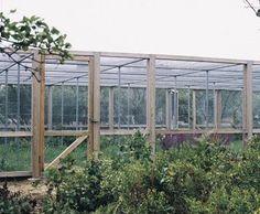 Screened Garden Enclosures   Google Search