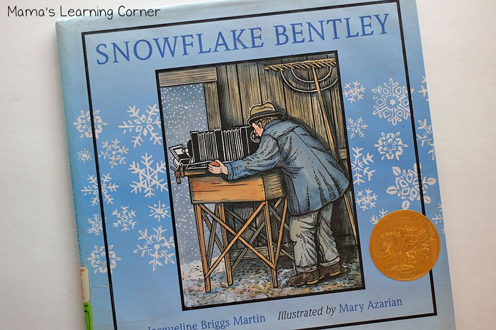 Favorite childrens books about snow childrens books
