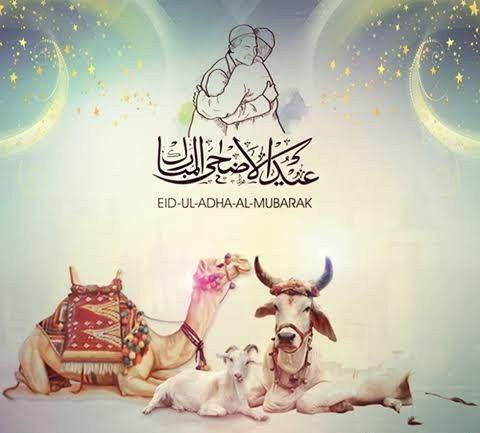 Pin On Eid Ul Adha