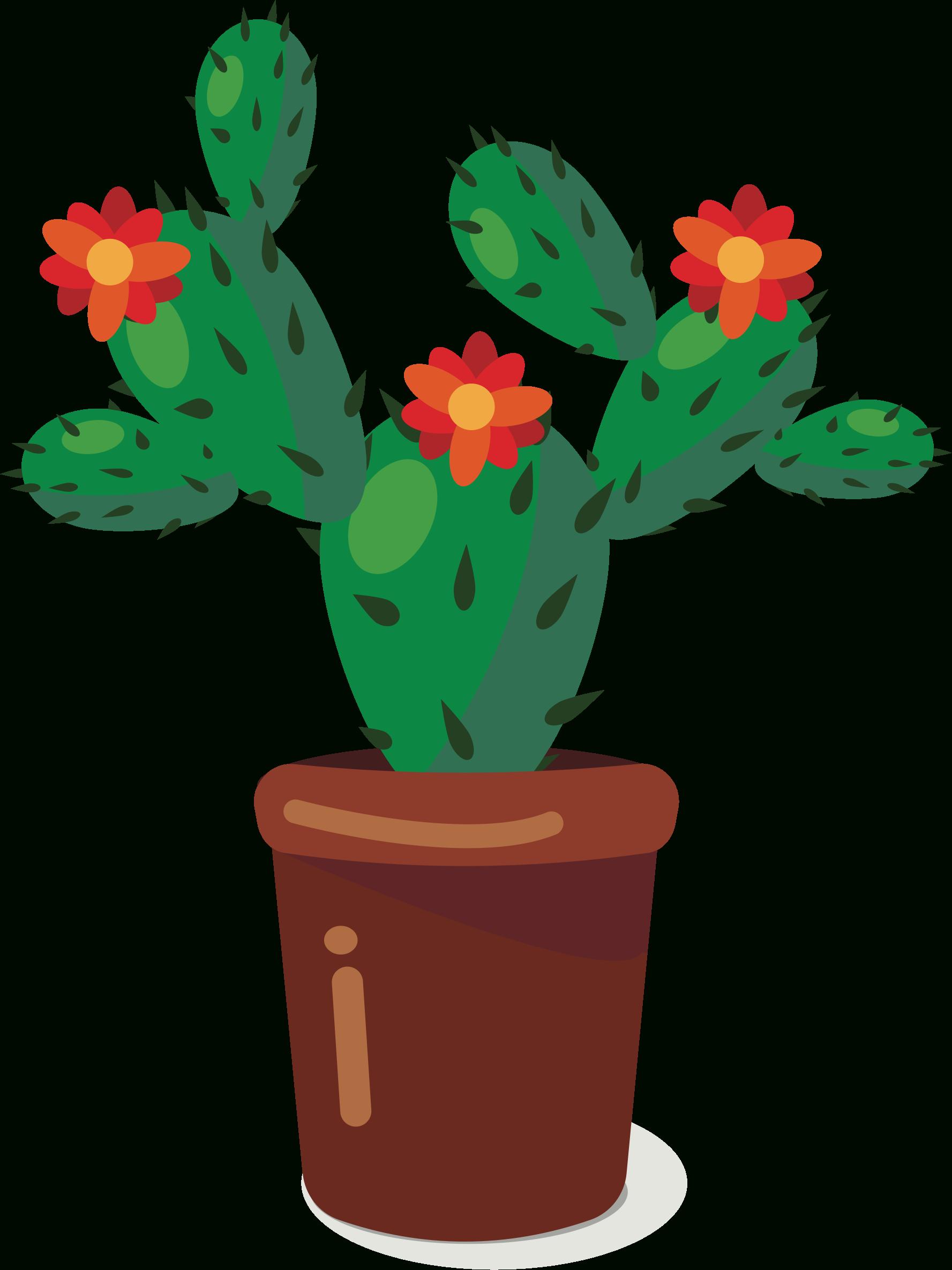 Plant cactus. Cute clipart plants catus