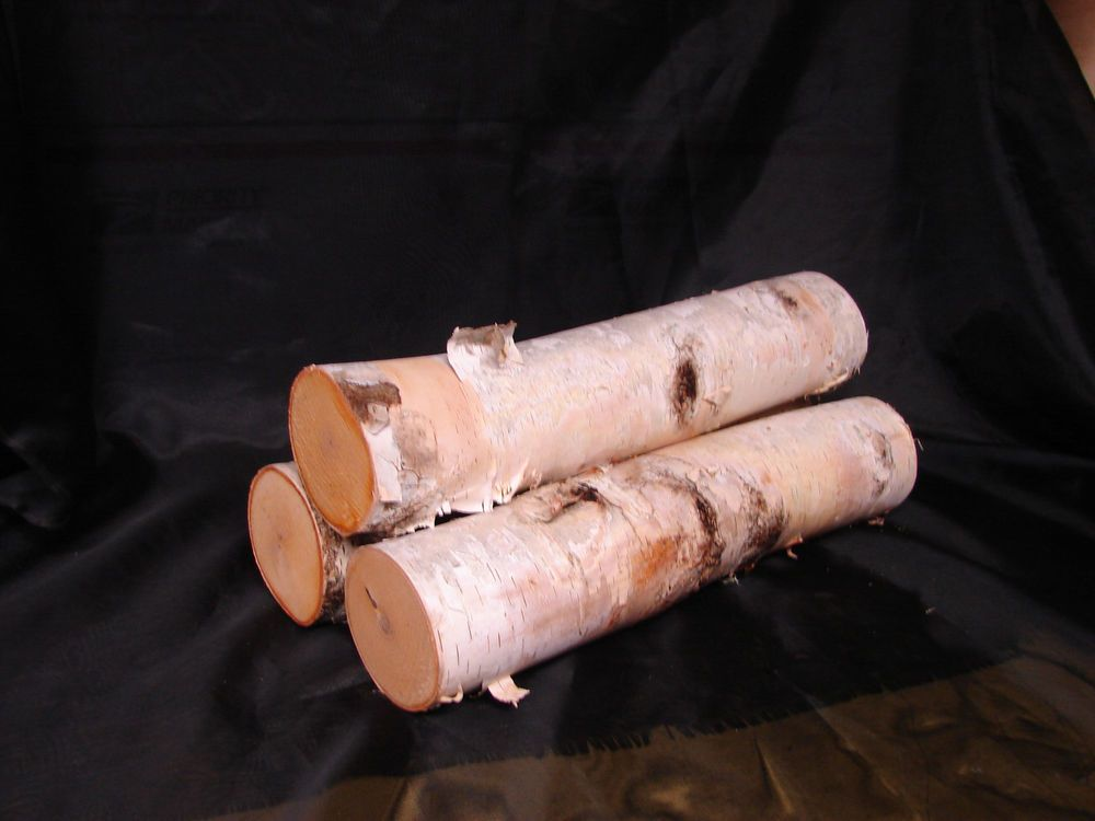 ~ 3 ~ WHITE BIRCH FIRE PLACE LOGS ~ 13 1/2 Inches Long ~