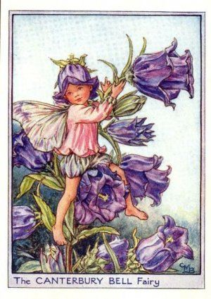 Canterbury Bell Flower Fairy Art Vintage Fairies Fairy Pictures
