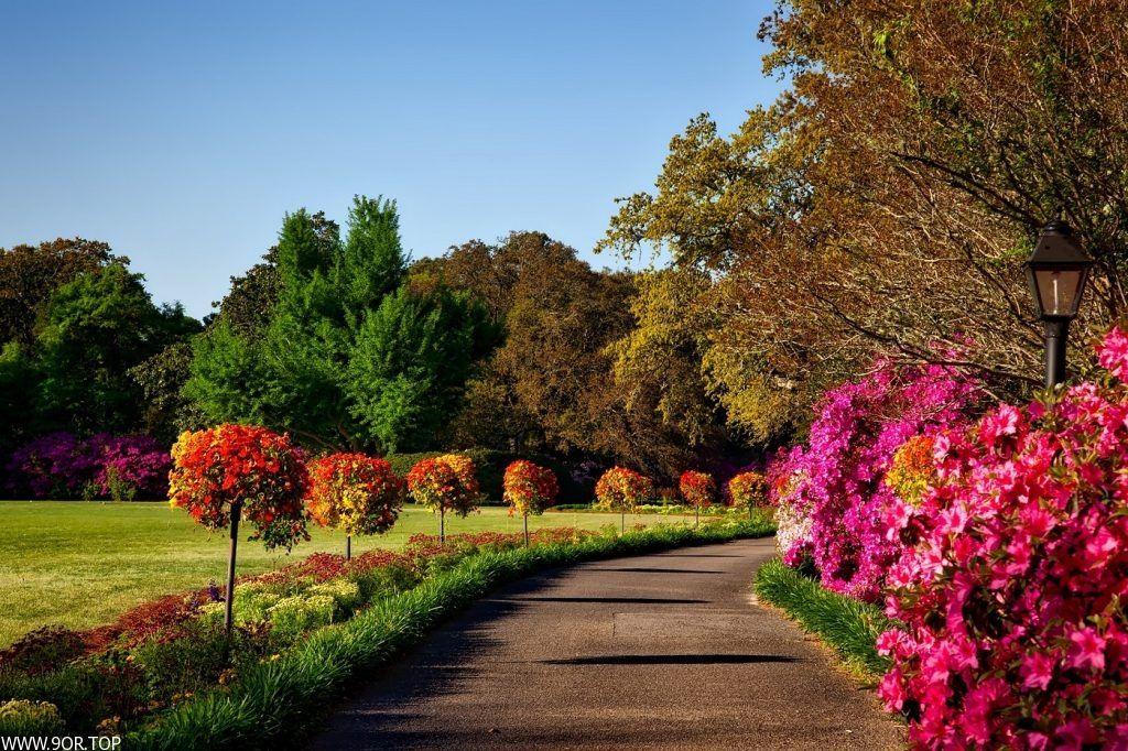 صور طبيعيه ساحره خلفيات طبيعه جميله 2018 Fall Landscaping Landscape Design Amazing Gardens