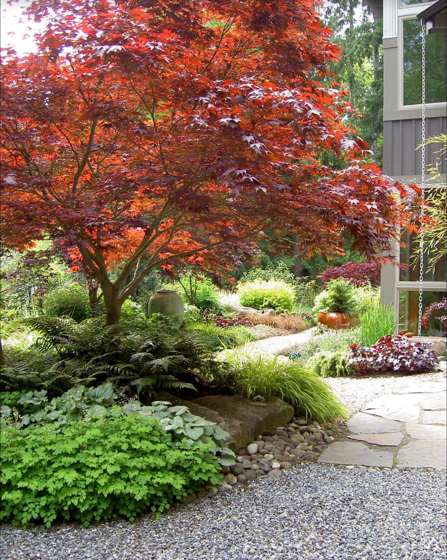 Love The Tree Landscapes And Pavers Courtesy Of Houzz Com Front Yard Landscaping Landscape Design Japanese Garden