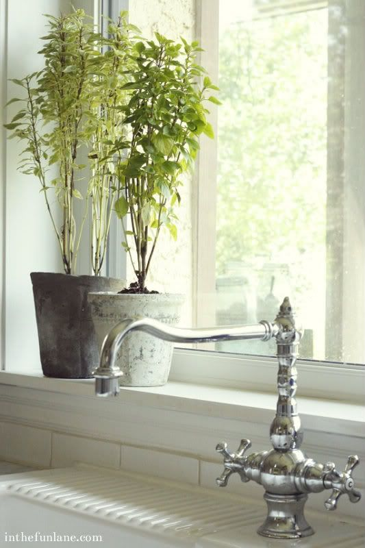 ... in the fun lane: Kitchen deep kitchen window sills for the sole purpose of growing herbs