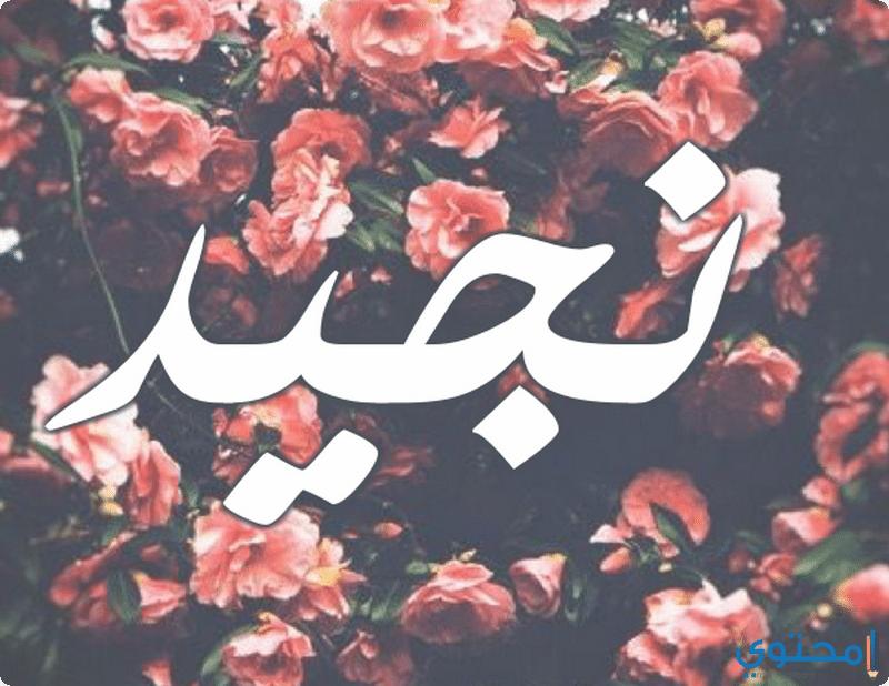 معنى اسم نجيد وحكم تسميته Nejad معاني الاسماء Nejad اجمل صور Poster Art Movie Posters