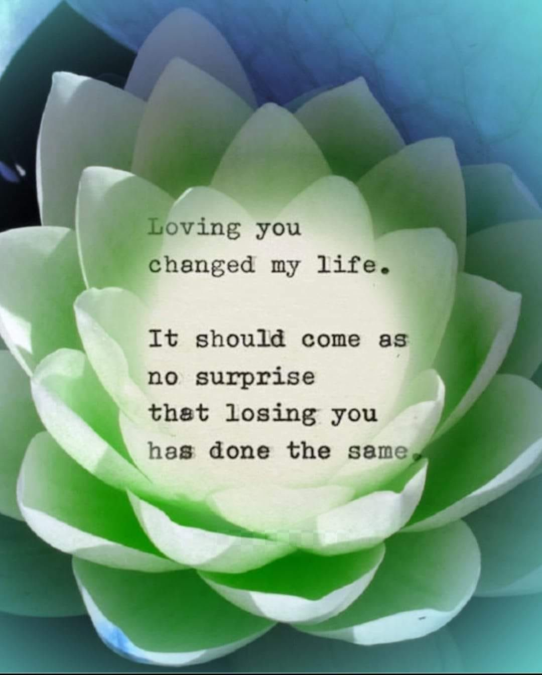 Loving you changed my life. It should come as no surprise that