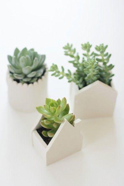 pequenas-macetas-blancas-plantas-suculentas Flores ,Jardines y