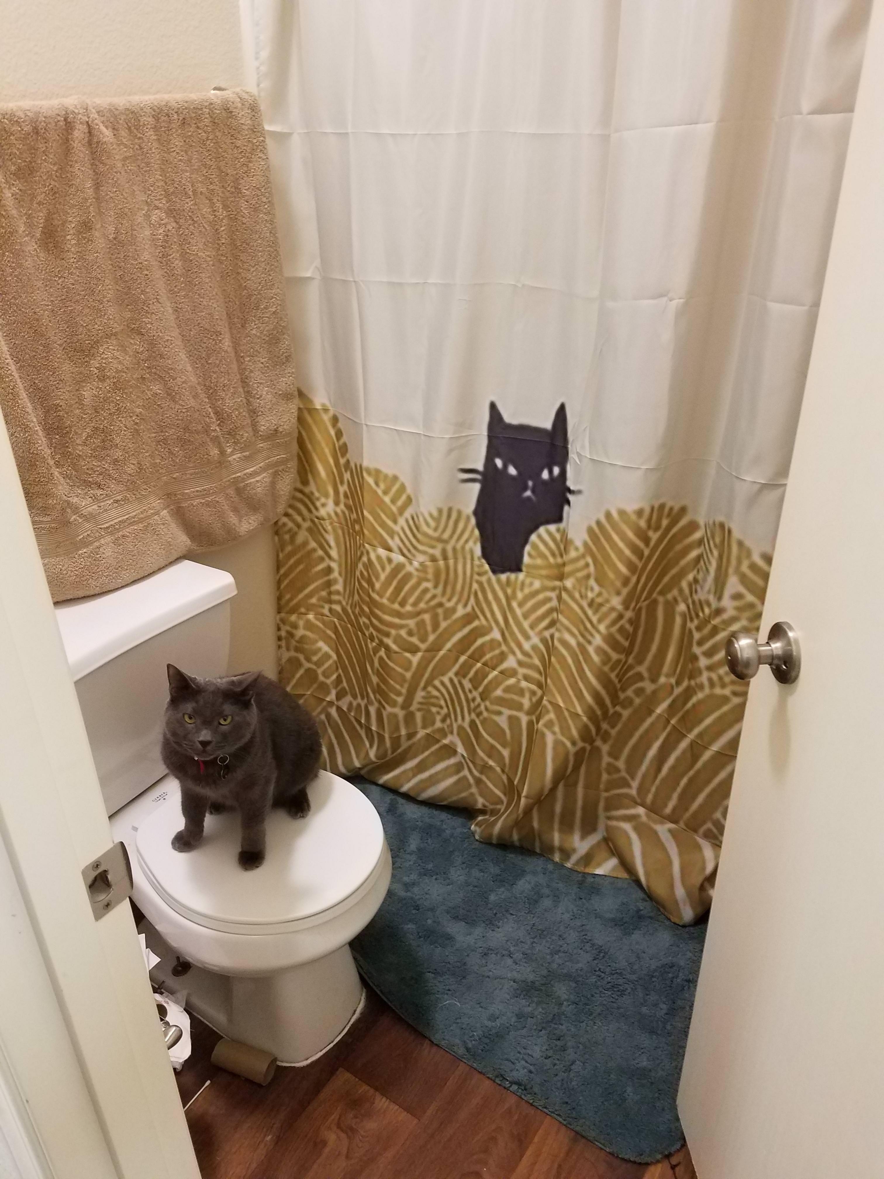 Spongebob Meme Shower Curtain