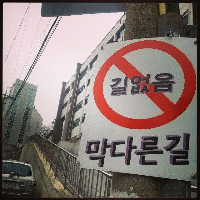 .@dalbong93 | 여기 어딘지 모르겠다. 새로운 지름길 개척하려 학교 뒷산탔다가 모르는 동네에 도착. | Webstagram