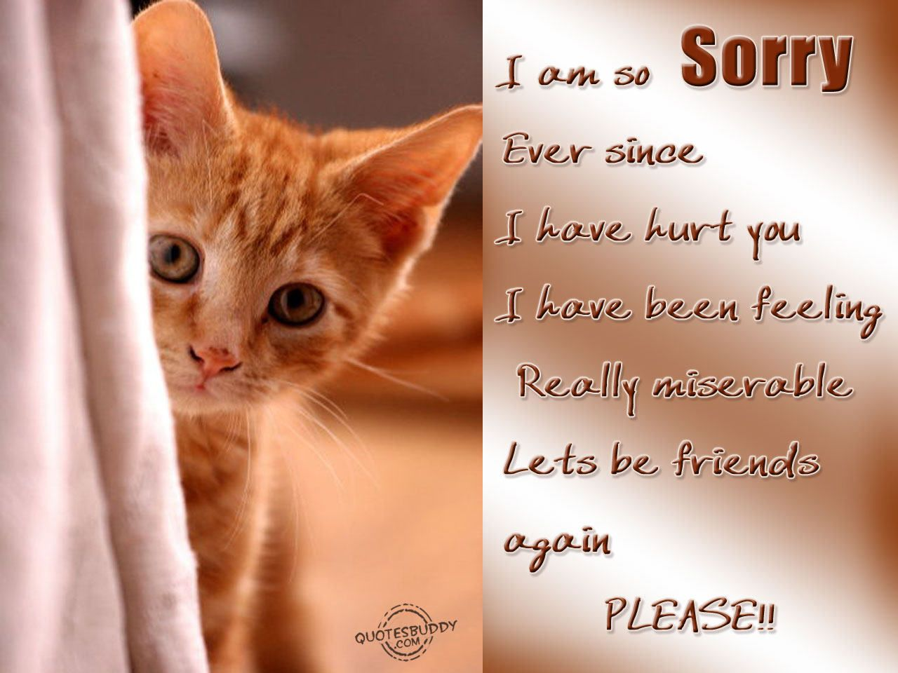 I Am Sorry Quotes For Hurting You Friend