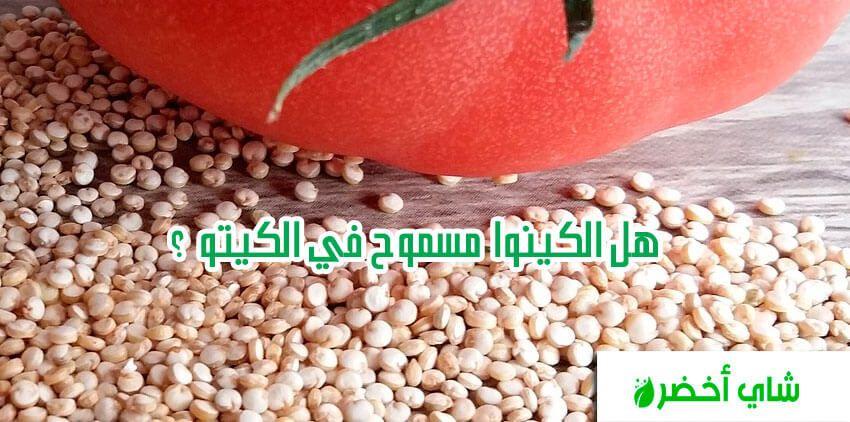 هل الكينوا مسموح في الكيتو Quinoa Fruit Keto