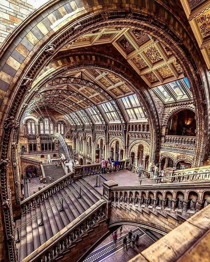 Photo of Natural History Museum, London