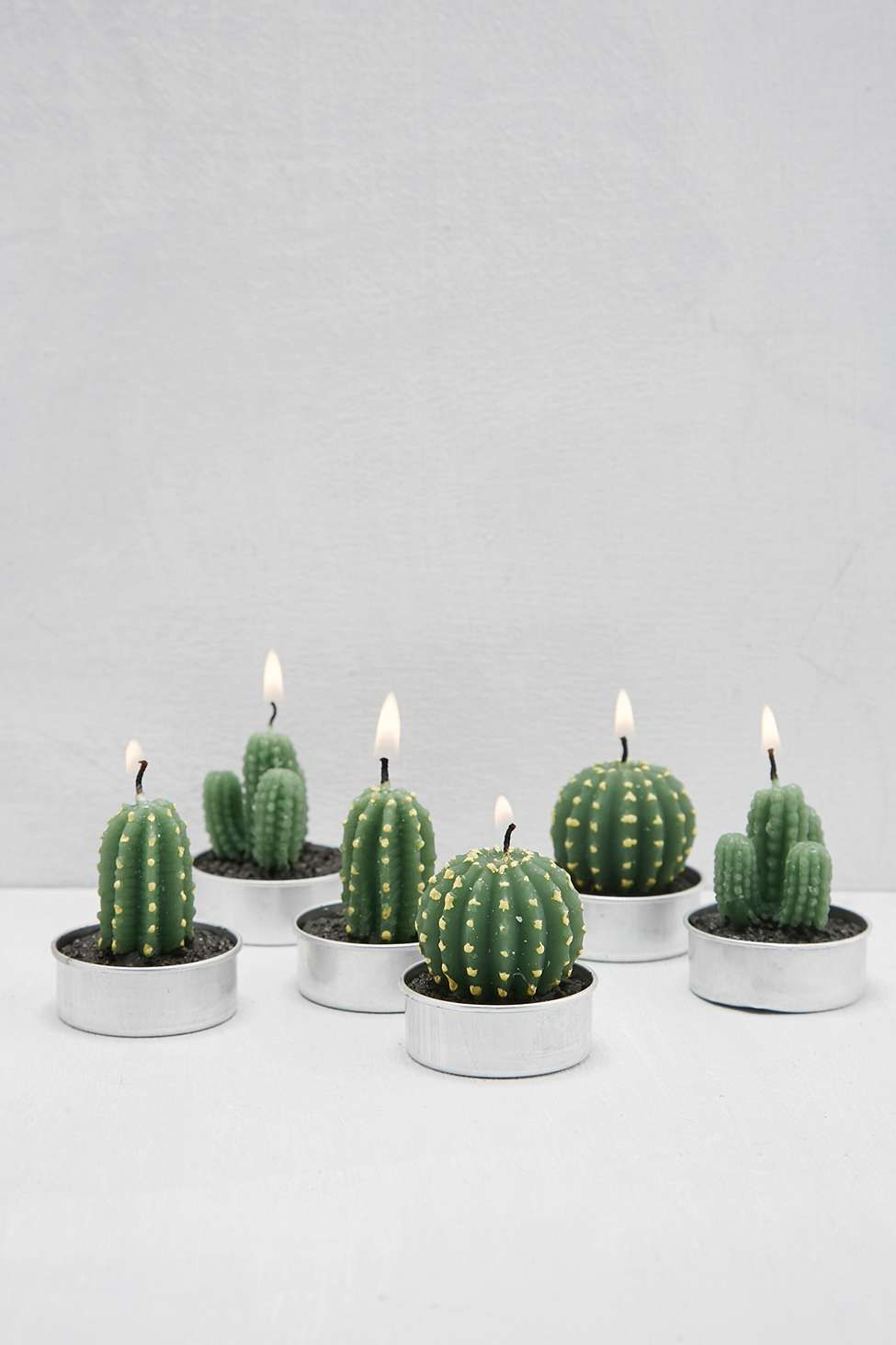 bougies chauffe plat cactus d co pinterest cactus bougies et plat. Black Bedroom Furniture Sets. Home Design Ideas