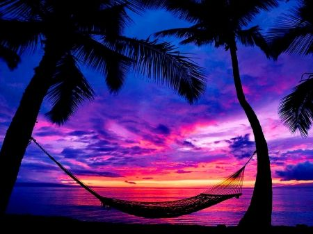 Hammock Tag wallpapers: Scene Ocean Summer Houses Hammock Beach ...