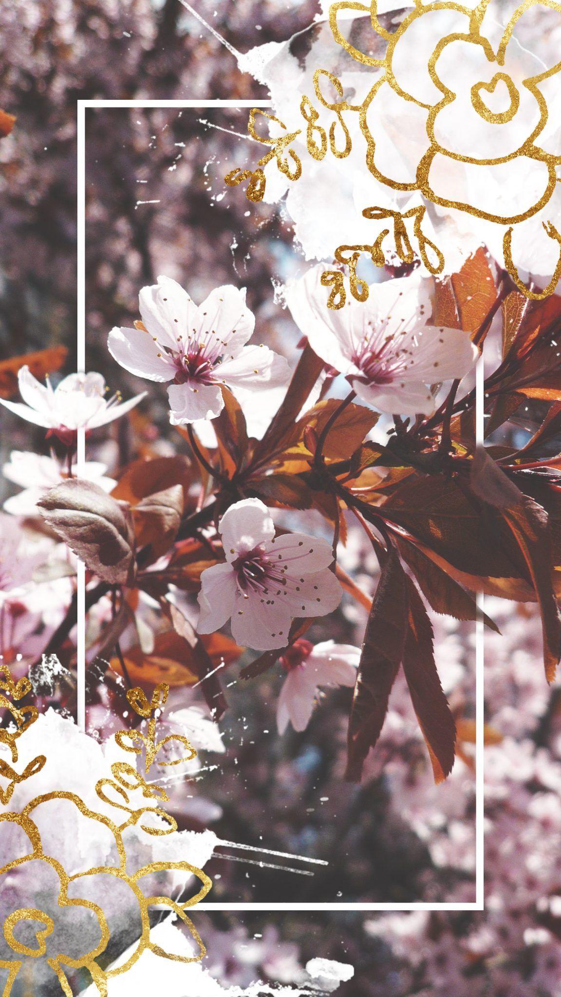 Jesienne Tapety Na Telefon 2 Wild Rocks Iphone Wallpaper Wallpaper Screen Wallpaper