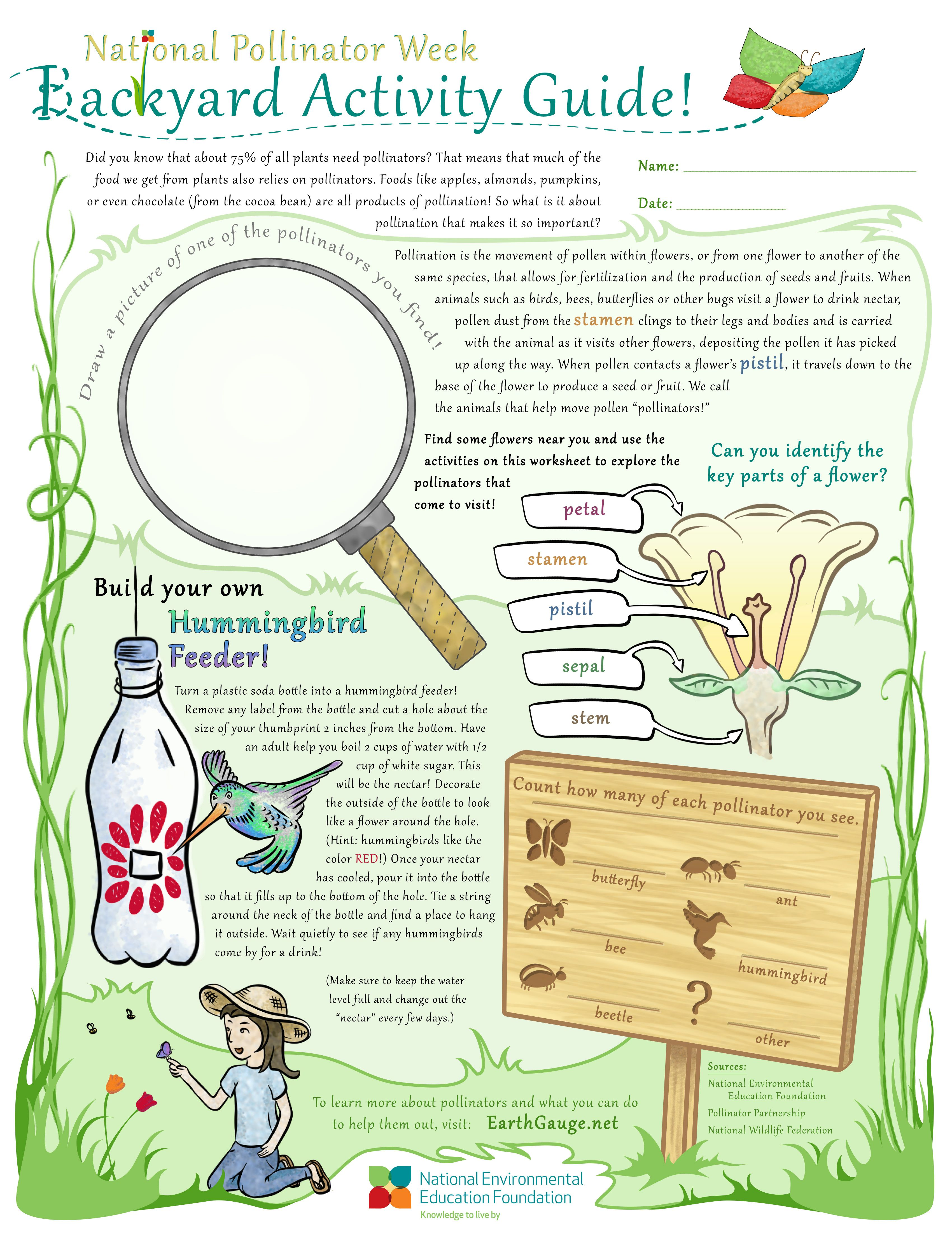 Use This Activity Worksheet To Learn More About