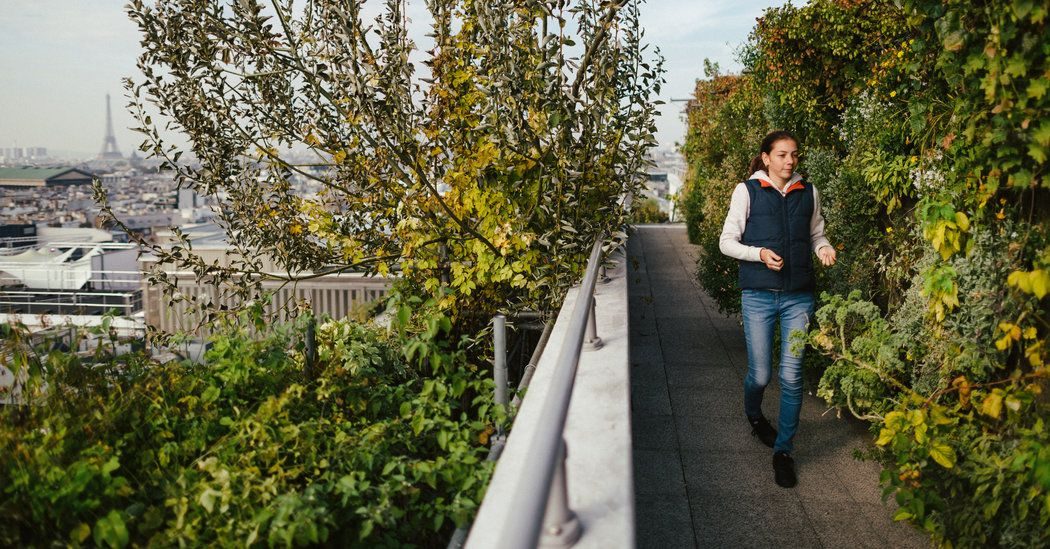 Organic retail farming is popping up in cities around the