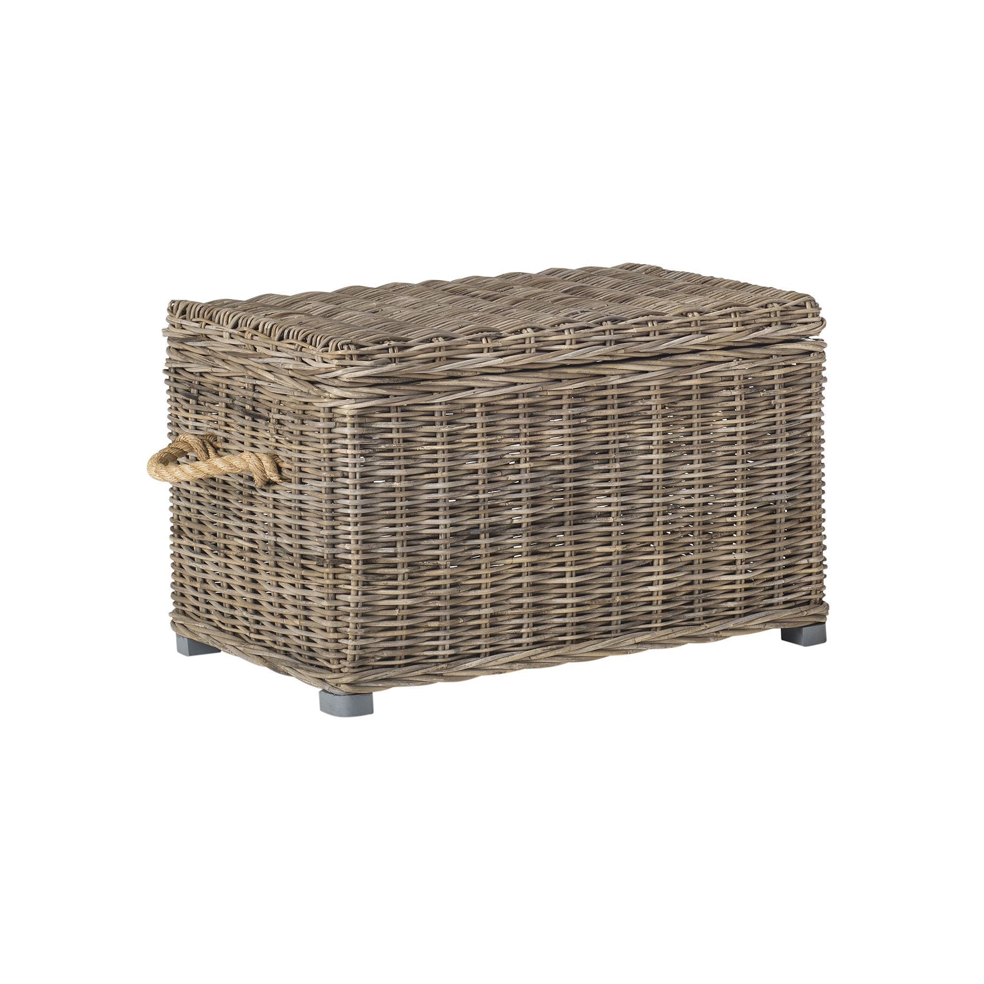 Safavieh Salim Wicker Trunk Natural