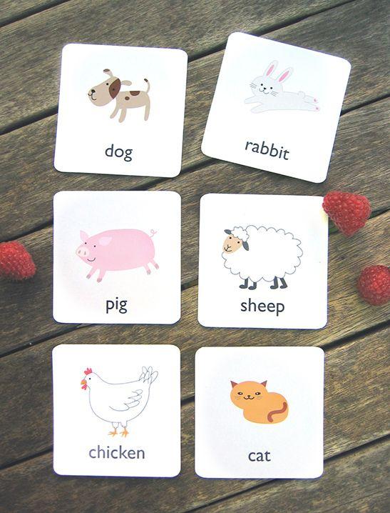 Printable Animal Flash Cards - Mr Printables   Child