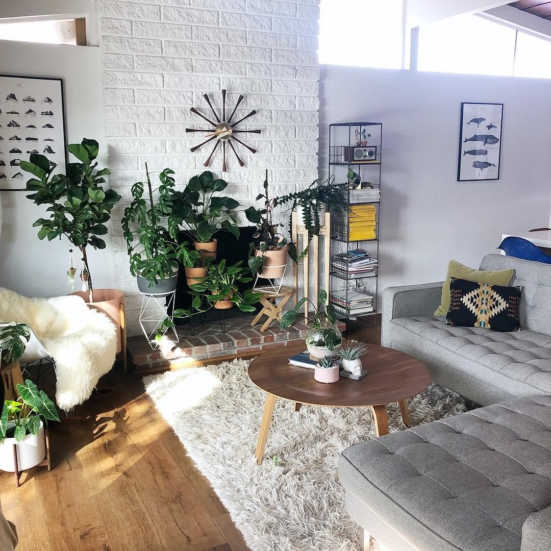 Gallery -   11 electrical planting Room ideas