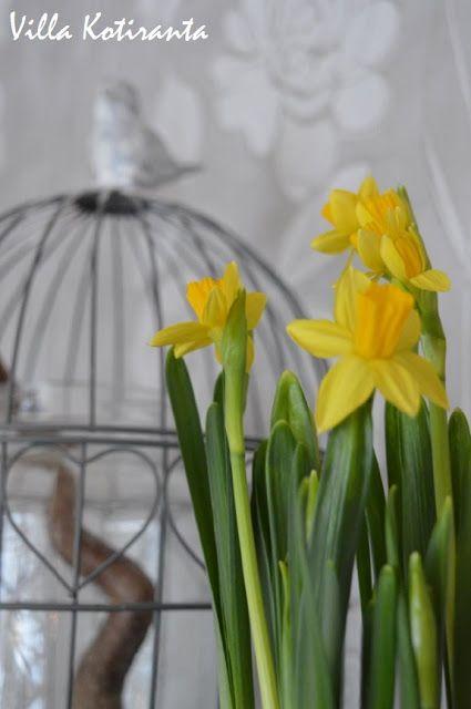 Valmistautumista pääsiäiseen. / Preparing for Easter.