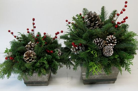 Christmas Arrangements Assorted Greenery Arrangements With