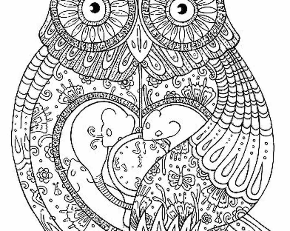 owl coloring pages for adults Printable Kids Colouring Pages – Printable Adult Coloring Page