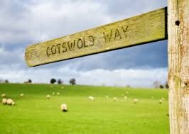 Image result for picnic cotswolds