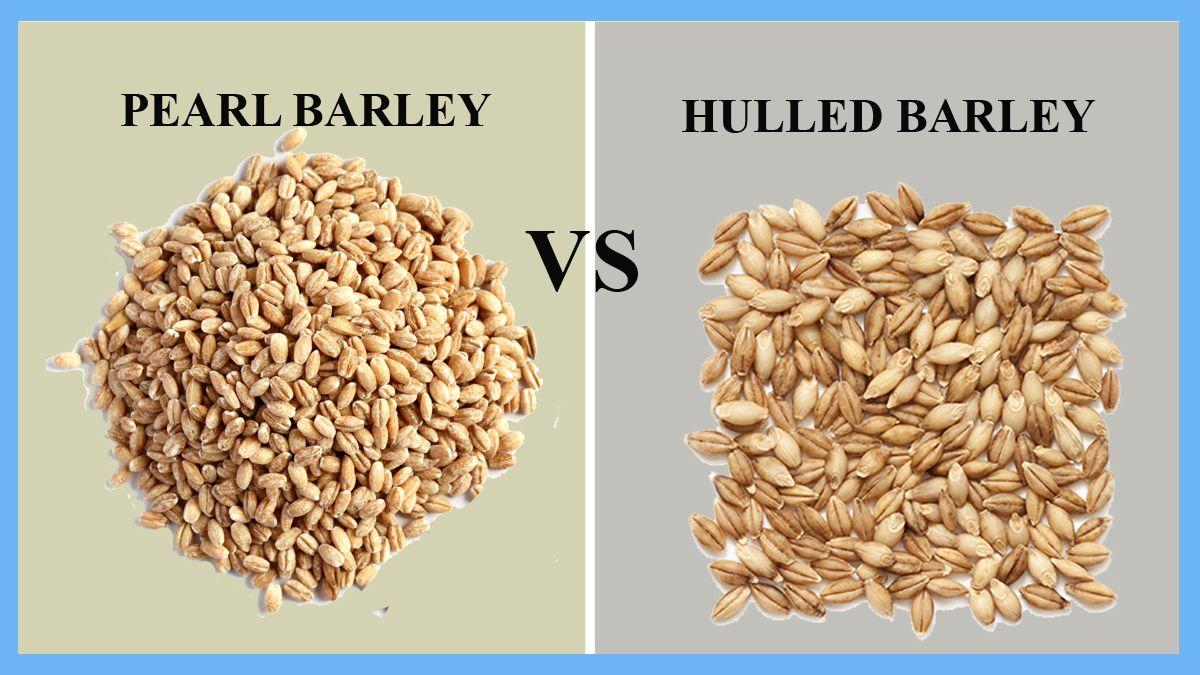 Pearl Barley vs Hulled Barley di 2020